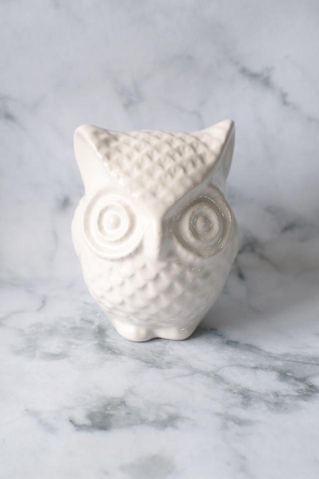 Owl Coin Bank (White)