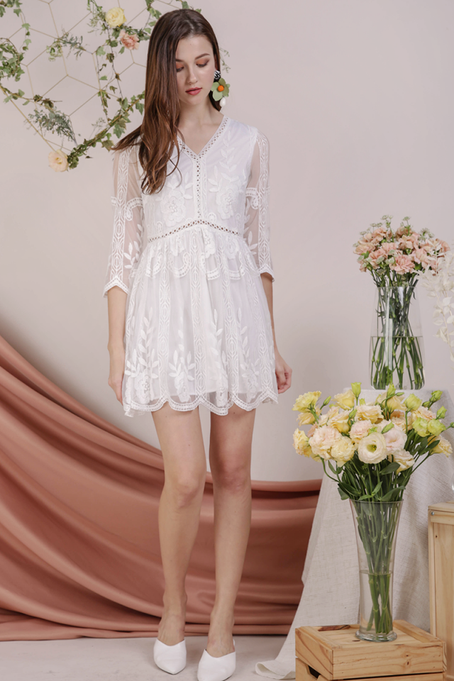 Sierra Mesh Embroidery Dress (White)