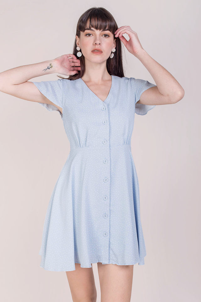 Pris Button Down Dress (Blue Dots)