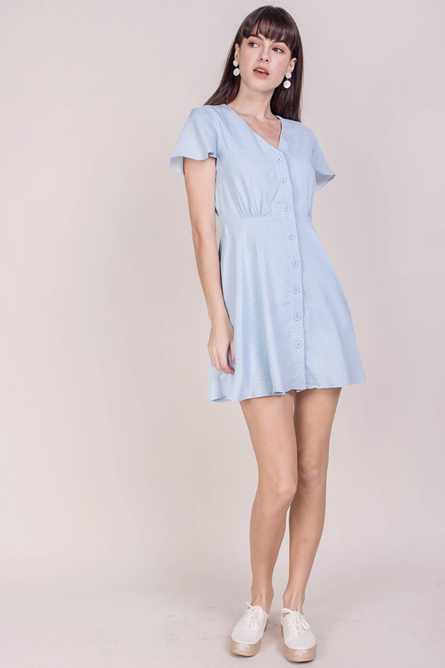 Pris Button Down Dress (Blue Dots)